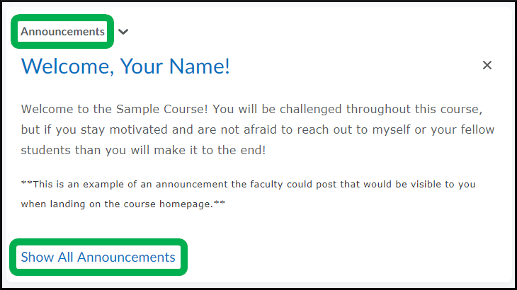 Announcements Widget, View All - Students.png